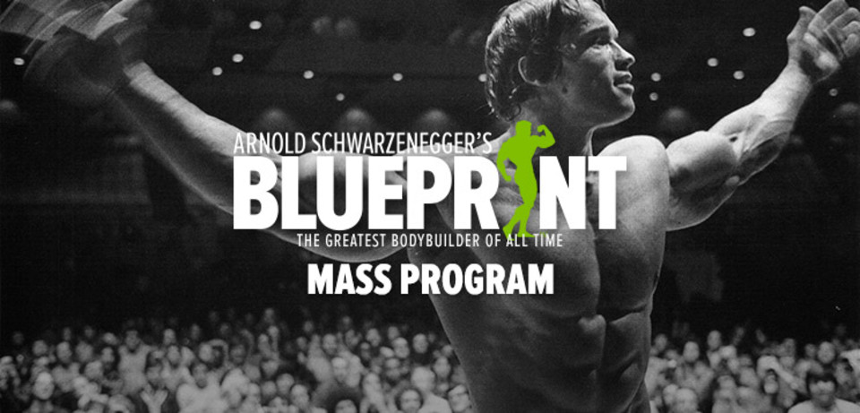 Health and wellness out about nyc magazine 72517 oa nyc health and wellness tuesday arnold schwarzeneggers blueprint training program how to train for mass malvernweather Choice Image